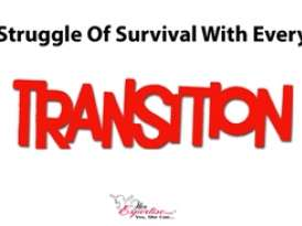 Struggle Of Survival With Every Transition