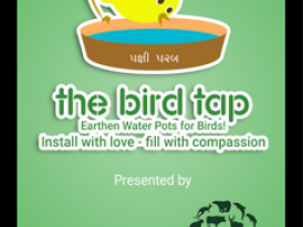 The Bird Tap Mobile App